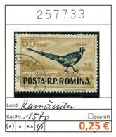 Rumänien - Roumanie - Romina - Rominia - Michel 1570 -  Oo Oblit. Used Gebruikt - - 1948-.... Repúblicas