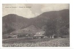 23032 -Villars Sur Clarens Champ De Narcisses Cachet Dompierre 1911 - VD Vaud