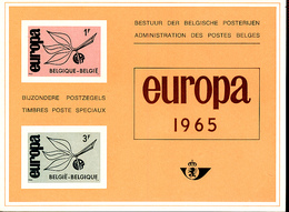 BELGIQUE BELGIUM LUXE SHEET COB LX47 EUROPA - Luxevelletjes
