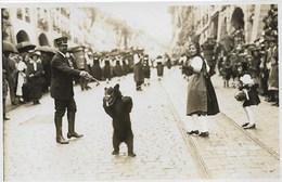Bern Fest.1924, Braunbär, Ours, Très Belle Carte Photo - BE Berne