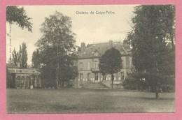 57 - PELTRE - Nels Metz ( Cliché D. Vincent ) Sans Numéro - Château De CREPY - France