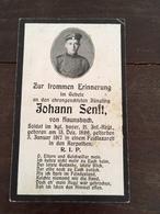 Sterbebild Wk1 Bidprentje Avis Décès Deathcard IR21 KARPATHEN 3. Januar 1917 Aus Haunsbach - 1914-18
