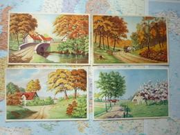 Paysages / Illustrations 12 Cartes - Illustrateurs & Photographes
