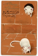 A MERRY CHRISTMAS : TWO MICE & MOUSEHOLE - TUCK'S ART SEREIES - EARLY, EMBOSSED / ADDRESS - JERSEY, DUHAMEL PLACE - Christmas