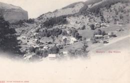 AS51 Wengen, Die Hotels - Undivided Back, Vignette - BE Berne