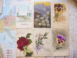 Illustrations De Fleurs 6 Cartes - Illustrateurs & Photographes