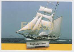 Genoa Yacht Club, Marina Militare Italiana, Brigantino Nave Italia Ex Swan Van Makkum (NL), Nuova - Sailing Vessels