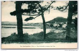 83 LE LAVANDOU - Vue Générale A Travers Les Pins - Le Lavandou