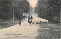 57 - Dieuze - Weißkircherstraße - Heimkehr Des Schäfers - Retour Du Berger - 1911 - Dieuze