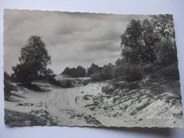 M84 Ansichtkaart Helvoirt - Duinen - 1966 - Nederland