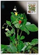 3 Cartes Maximum 2000 Fruits Des Bois (myrtille, Framboise, Fraise) / Maximum Cards (3) Berries - FDC