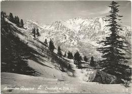 W3581 Appennino Reggiano - Monte Casarola (Reggio Emilia) - Panorama Invernale / Viaggiata - Italie