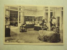 31706 - TERVUEREN - MUSEUM VAN BELGISCH CONGO - INZAMELING VAN CAOUTCHOUC SAP - ZIE 2 FOTO'S - Tervuren