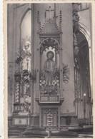 DIEST / SINT SULPITIUS KERK / BEELD VAN ST JAN BERCHMANS - Diest