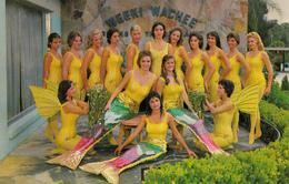 Weeki Wachee Florida USA - Mermaid Capital Of The World - Sirènes - Sexy Ladies - Unused - 2 Scans - United States