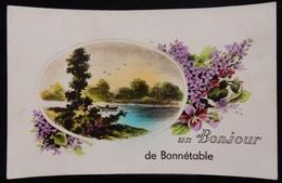 72 CPA UN BONJOUR DE BONNETABLE - Bonnetable