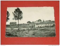 SARS LA BUISSIERE  -   Grignard   -  Panorama - Lobbes
