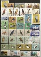 Pologne Poland Collection Oiseaux Birds - Timbres
