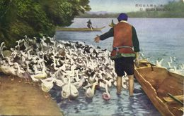 Formosa Taiwan, Native Duck Keeper At Work (1930s) Postcard - Formosa