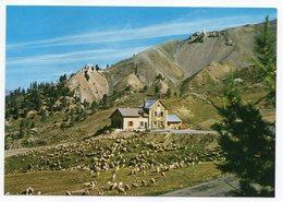 CERVIERES -- Col D'Izoard (2360m)  --Refuge Napoléon--troupeau De Moutons--cachet Du Refuge.................à  Saisir - Autres Communes