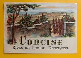 10763 - Concise Rives Du Lac De Neuchâtel Suisse Ancienne étiquette - Labels