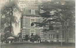 MOERBEKE-WAAS : Chateau Kasteel Me Lippens-De Kerchove - RARE VARIANTE - Cachet De La Poste 1909 - Moerbeke-Waas