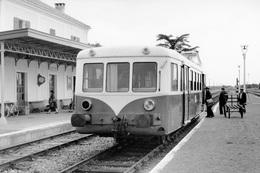 Riscle. Autorail 150 Chevaux X 5800 Mont-de-Marsan - Tarbes. Cliché Jacques Bazin. 30-07-1959 - Trains