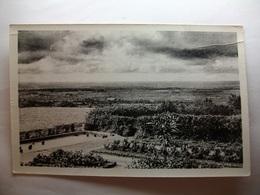 Carte Postale Les Herbiers (85) Le Mont Des Alouettes ,panorama Pris De La Terrasse Du Café (Petit Format Circulée ) - Les Herbiers