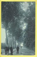 * Kortenberg - Cortenberg (Vlaams Brabant) * (SBP, Nr 9) Avenue De La Station, Animée, Allée, Rare, Old CPA Unique, TOP - Kortenberg