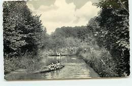 BOISSY-L'AILLERIE - La Viosne - La Baignade - Boissy-l'Aillerie