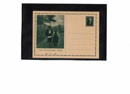 FAL10- TCHECOSLOVAQUIE - CARTE POSTALE ILLUSTREE MICHEL N° 56 TTB - Cartes Postales