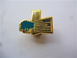 PINS Médical CENTRE HOSPITALIER FONTAINEBLEAU 77 SEINE ET MARNE / 33NAT - Médical