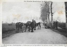 CPA (82) MONTAUBAN. Inondations Du Midi (1930). Enlèvement Par Les Agriculteurs Des Animaux Noyés, Vache ..I 203 - Montauban