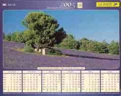 °° Calendrier Almanach La Poste 2005 Lavigne - Dépt 06 - Champ De Lavande Et Roussillon - Groot Formaat: 2001-...