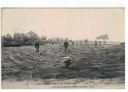 7- NOS DOUANIERS A LA FRONTIERE  A La Poursuite D'un Chien Fraudeur - E.C.1919 - Douane