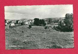 C.P. Falmignoul = Panorama - Dinant