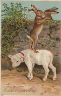EASTER ; Lamb & Rabbits , 1914 - Easter