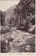 Glen Castle Road, Dot's Glen, Katoomba, NSW - Vintage Unused PC - Australia