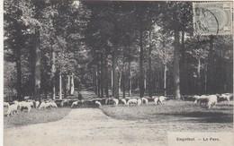 GENK / ENGELHOF / HET PARK / HERDER MET SCHAPEN / 1909 - Genk