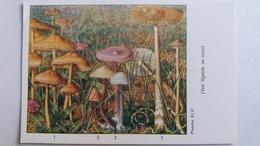 CHAMPIGNON CHAMPIGNONS PLANCHE XLVI MARASME D OREADE MYCENE PUR COLLYBIE   PUB TYZINE - Mushrooms