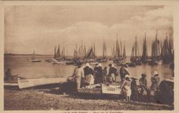Ile D'Oléron 17 - La Cotinière - Port - Bâteaux De Pêche - Editeur CIM - Ile D'Oléron