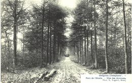 OTTIGNIES  Parc De L' étoile Une Des Avenues. - Ottignies-Louvain-la-Neuve