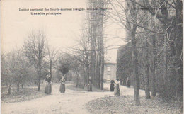 "1905  Berchem - Bruxelles "" Institut Des Sourds Muets Et Aveugles ""  Une Allée Principale - Onderwijs, Scholen En Universiteiten"