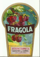 "4492 ""FRAGOLA-DISTILLERIE COLOMBO S.A.-CARDANO AL CAMPO-VARESE"" ORIGINALE - Altri"