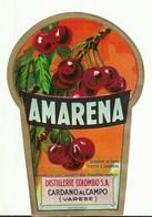 """4493 """"AMARENA-DISTILLERIE COLOMBO S.A.-CARDANO AL CAMPO-VARESE"""" ORIGINALE - Etiketten"""