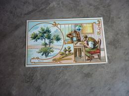 Ancienne Chromo Série Les Arbres Le Buis - Collections