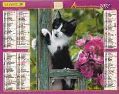 °° Calendrier Almanach La Poste 2007 Lavigne - Dépt 20 - Chatons - Calendars