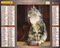 °° Calendrier Almanach La Poste 2003 Lavigne - Dépt 33 - Chats - Calendars