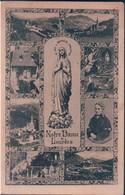 POSTAL NOTRE DAME DE LOURDES - Lourdes