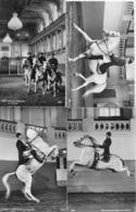 AK 0269  Wien - Spanische Reitschule / Konvolut Von 4 Karten Um 1960 - Pferde
